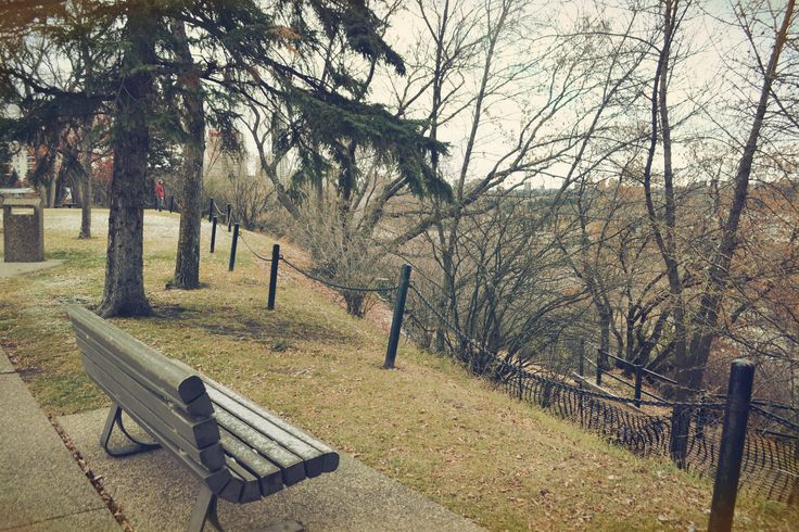 photo in the park #winter #Canada