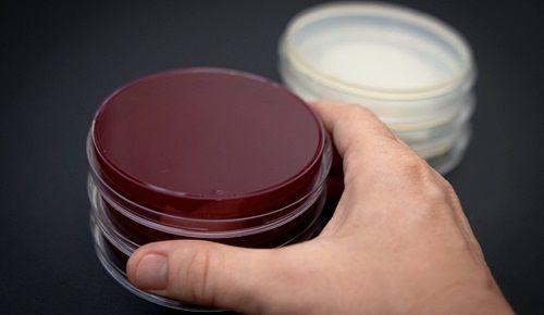 Obat Pemutih Wajah di Apotik Kimia Farma