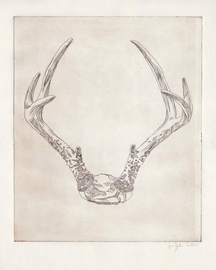 17 Best images about antlers on Pinterest   Door handles ...