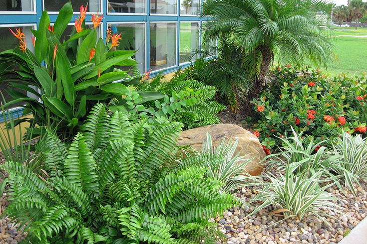 tropical landscaping ideas | Landscape Design Gallery