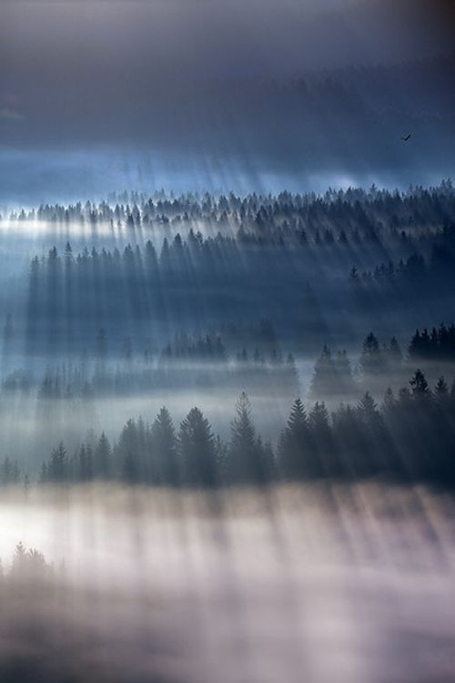 Explosion of light, Beskidy mountain's, Poland by Marcin Sobas, on 500px.