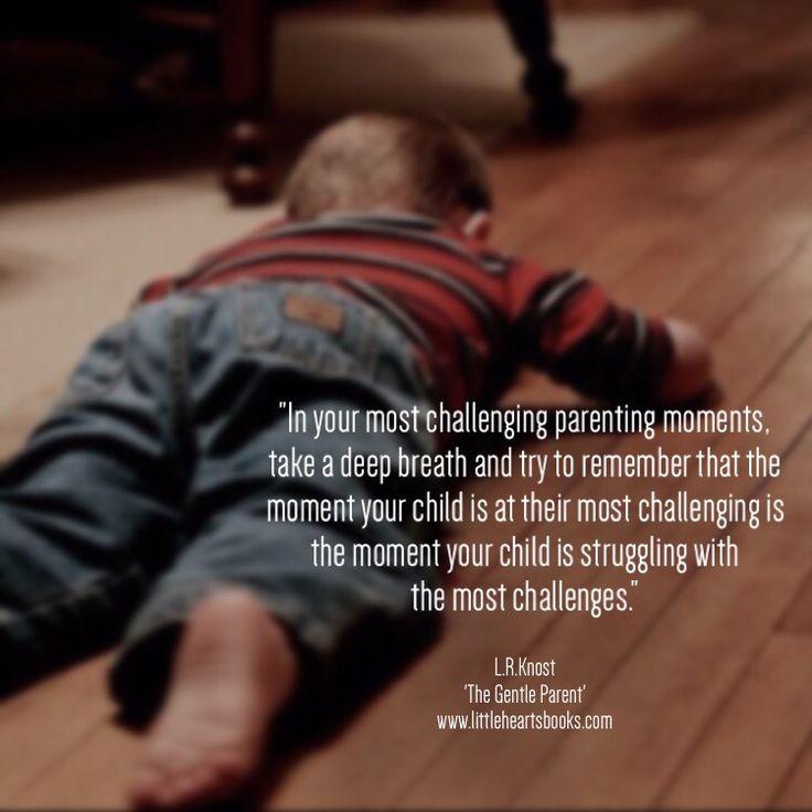 'The Gentle Parent: Positive, Practical, Effective Discipline'