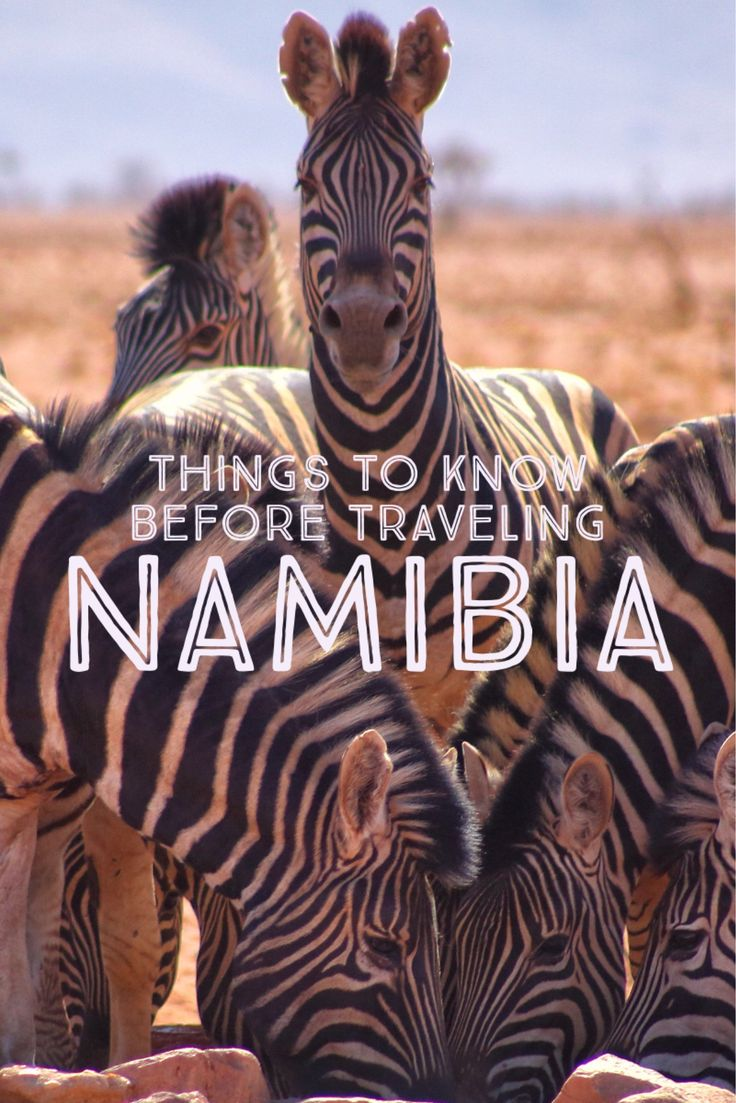 Heading to Namibia soon? Here are some Namibia Travel Tips to make traveling there a little easier.