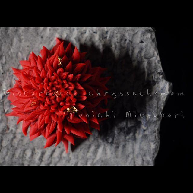 """#一日一菓 「 #乱菊 」 #煉切 製 皿 : #すずきたもつ #wagashi of the day """"Disturbance chrysanthemum""""…"""