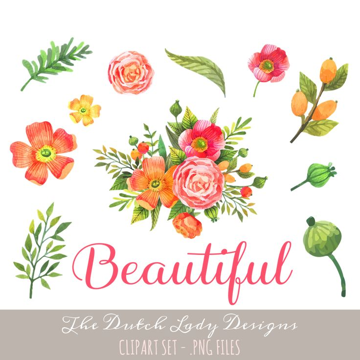 Floral clipart set - find it here: https://www.etsy.com/listing/255369457/