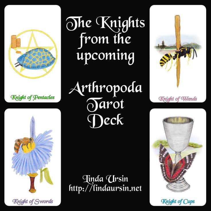 You can now pre-order the Arthropoda Tarot Deck