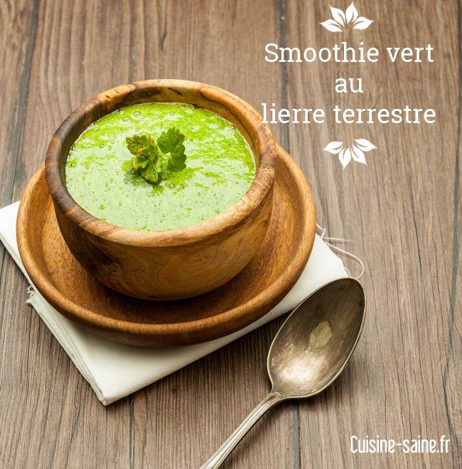 Je cuisine les plantes sauvages livres cuisine and smoothie - Cuisine plantes sauvages ...