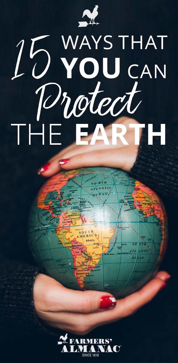 15 Things You Can Do To Protect The Earth Save Earth Earth Steward