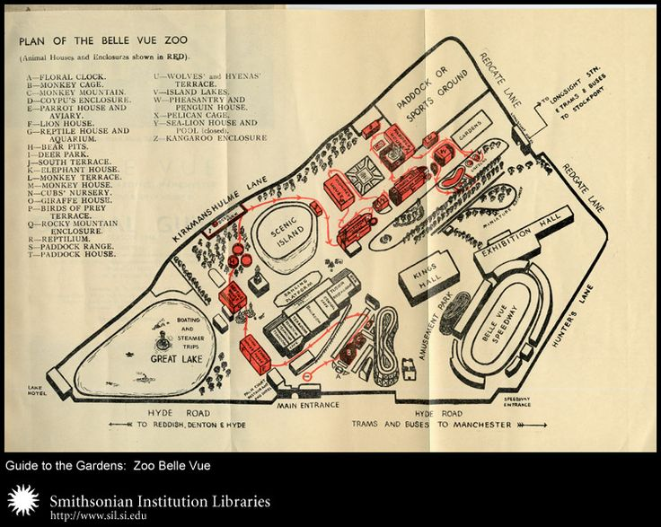 Vintage Zoo Maps and Guides at the Smithsonian: Zoo Belle Vue 1944