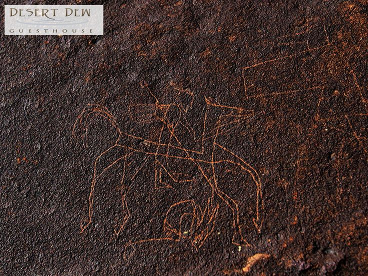 There are sites on the farm where Bushman art is prolific. Some of these sites contain unusual Rock etchings. Link: http://ow.ly/IDeO306orM2