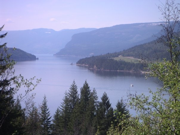 Salmon Arm of Shuswap Lake, below Hwy 1 from Sicamous.  It was near here that I had to hide in the log boom...