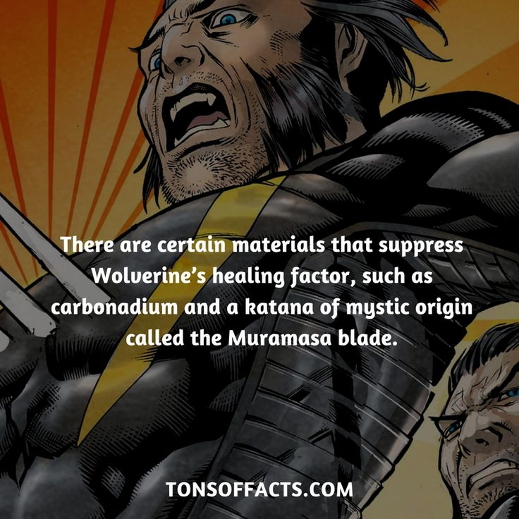 There are certain materials that suppress Wolverine's healing factor, such as carbonadium and a katana of mystic origin called the Muramasa blade.  #wolverine #xmen #comics #marvel #interesting #fact #facts #trivia #superheroes #memes #1