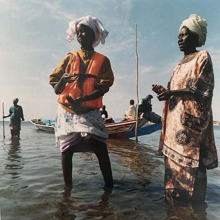 Political Map Of Senegal%0A Fishing in the mangroves  Senegal