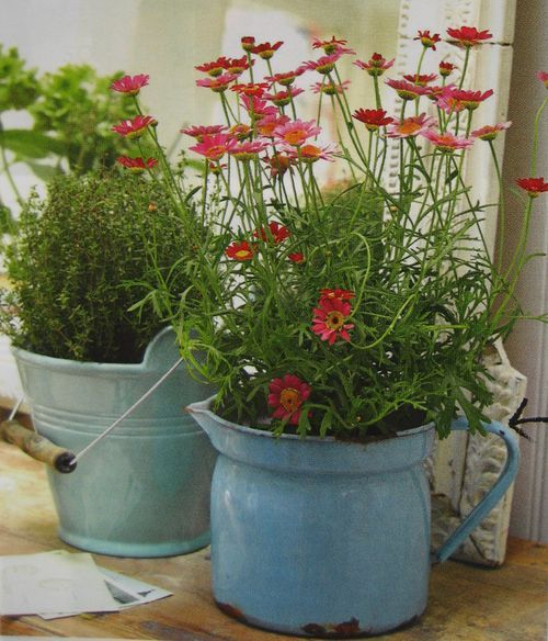 ...And the repurposed old enamel containers used as plant pots.Plants Can, Gardens Ideas, Gardens Can, Plant Can, Yards Sales Finding, Shabby Chic, Flower Gardens, Old Bikes,  Flowerpot