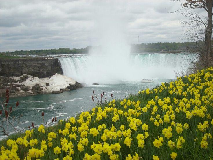 """""""The Falls"""" - Niagara Falls, ON"""