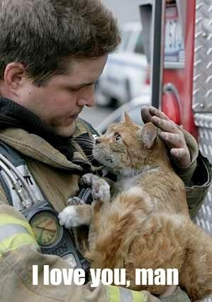 God bless you ♥ The look on the cats face say,s it all...