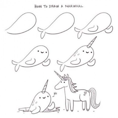 How to draw a narwhal - by Philip Tseng @ supercutekawaii.com
