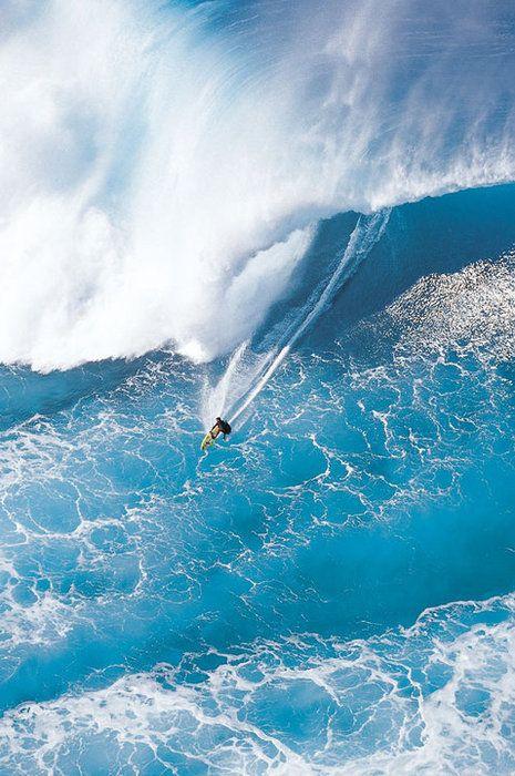Giant Blue Breaker, North Shore, Oahu, Hawaii - US
