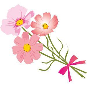 コスモスの素敵な花束イラストアイデア