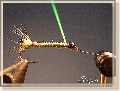 """Cased Caddis - FAOL"""