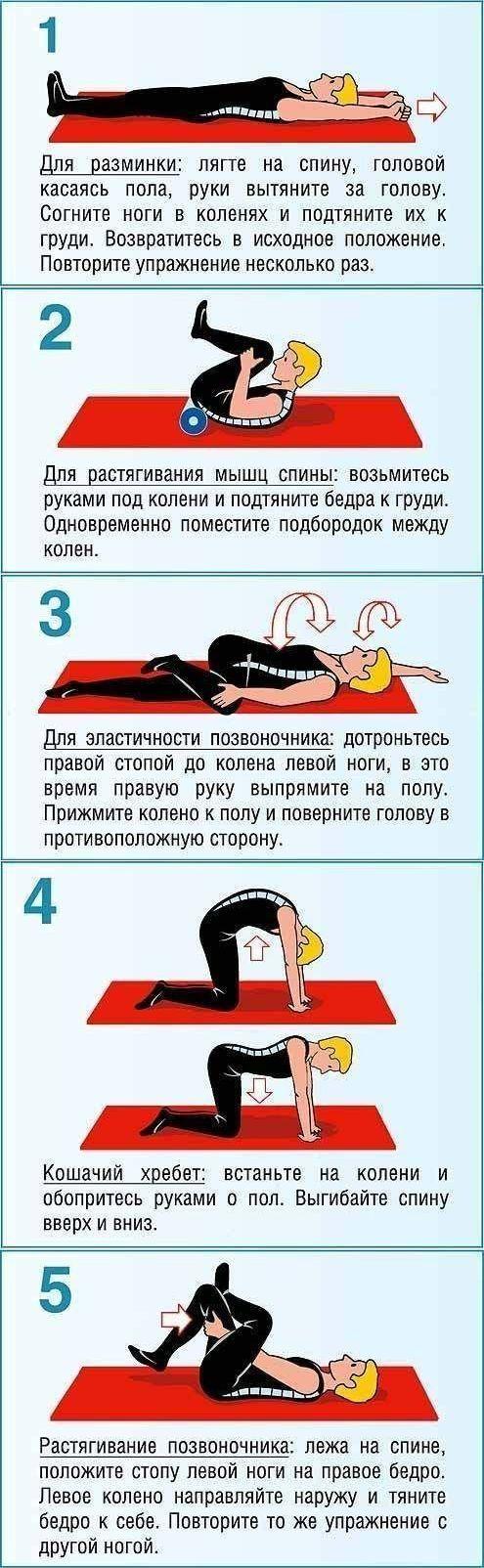 Как убрать боль в спине. Упражнения для позвоночника и живота - Рецепты, диеты, мода и красота, светская жизнь