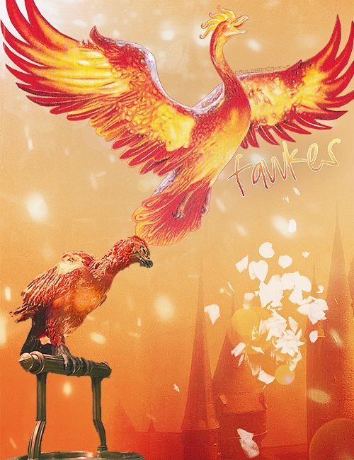 I wish I would have found this when I was trying to decide on my tattoo, I wanted Fawkes and I couldn't find a good version.