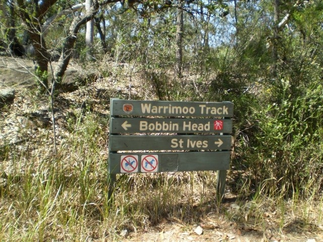Warrimoo Tracks, Bobbin Head.  Great bushwalk website.