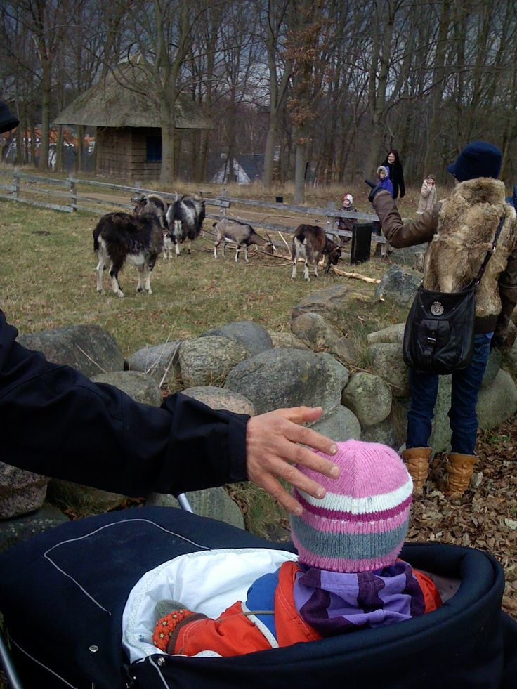 Frilandsmuseet. Få et virkelighedstro indblik i, hvordan folk levede for 200 år siden. På markerne i området græsser heste, geder, lam og får, og sommeren igennem er der masser af aktiviteter.