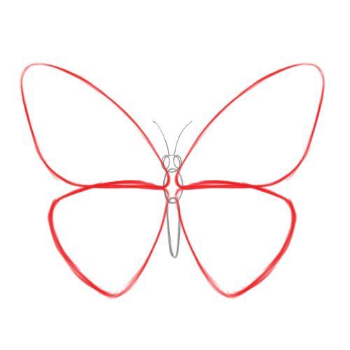 12 best butterflies to...