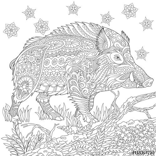 Vector: Zentangle stylized cartoon wild boar (razorback, warthog, hog, pig). Hand drawn sketch for adult antistress coloring book page, T-shirt emblem, logo, tattoo with doodle, zentangle design elements.
