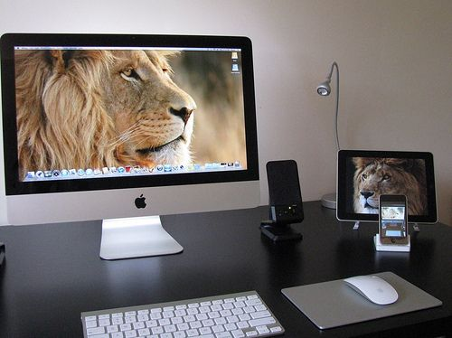 Love Lions, Love Mac, Love Mac's running on Mountain Lion...oh irony.