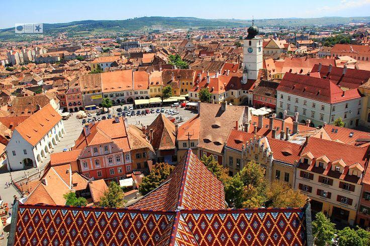 Sibiu, gardul și leopardul