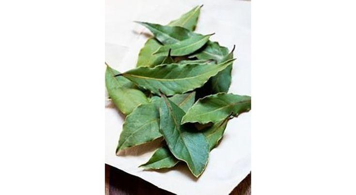 Rhume, angine, mal de gorge ? Découvrez les remèdes de grands-mères pour guérir les maladies de l'hiver avec les plantes du jardin !