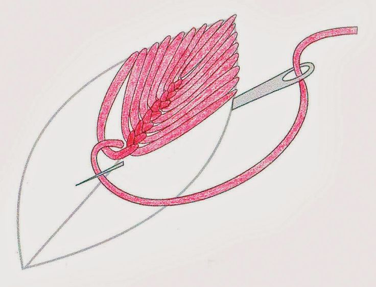 2 o 2 Anna Scott : 2. You then continue down the leaf shape in Cretan stitch. The needle goes to the back on the outer edge and comes to the front next to the centre vein - as close as possible to the previous stitch and inside the thread loop. It is important also to keep stitches really close together at the outer edges. I push the needle tip up against the previous stitch almost at the op of it, otherwise the angle of the stitches will 'flatten' as you near the base.