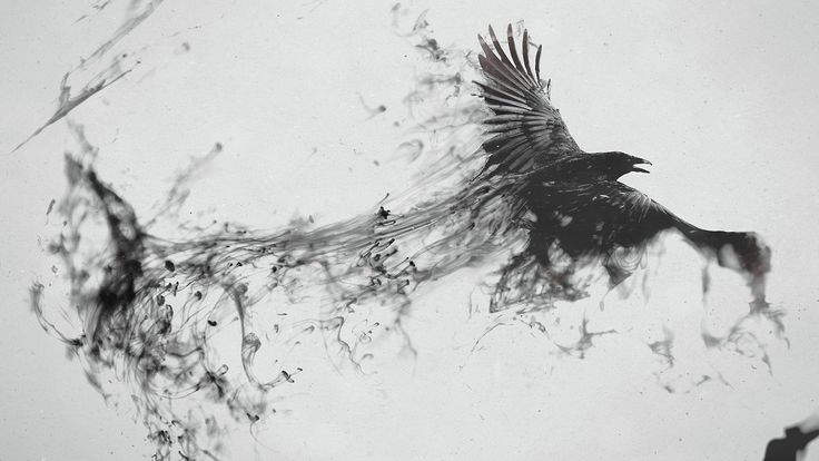 angel wings black and white drawing tranparent background - Google Search