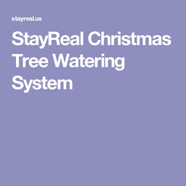 Best 25 Christmas Tree Watering System Ideas On Pinterest