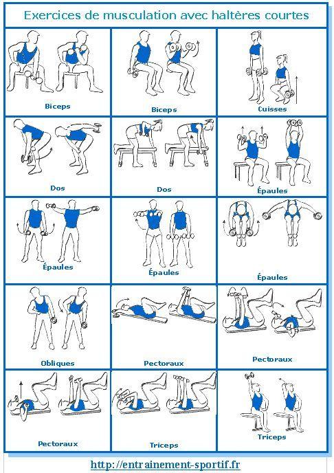 Fitness   Illustration   Description   Musculation avec #haltères: 15 exercices 1 programme 1 carnet entrainement-spor…    – Read More –