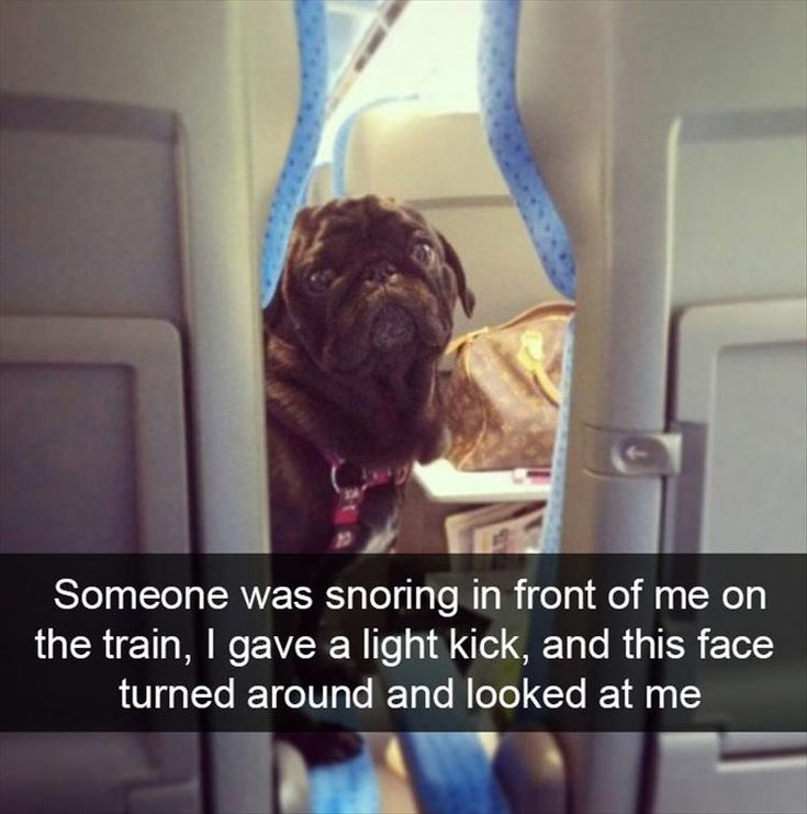 Funny Pictures Of The Day - 30 Pics
