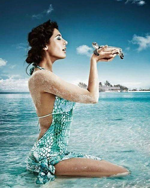 The beauty in the ocean Nargis Fakhri   #NargisFakhri #celebrity #bollywood #bollywoodactress #bollywoodactor #actor #actress #star #fashion #fashionista #bollywoodfashion #bollywoodstyle #glamorous #hot #sexy #love #beauty #instalike #instacomment #filmywave
