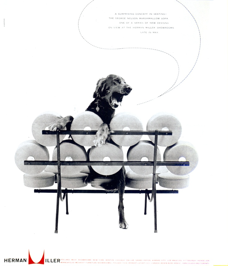 Nelson Marshmallow Sofa and the Dog, 1956Диване Marshmallows, Marshmallows Который, Диван Marshmallows, Prints Design, Marshmallows Sofas, Dogs Ads, Nelson Marshmallows, Herman Miller