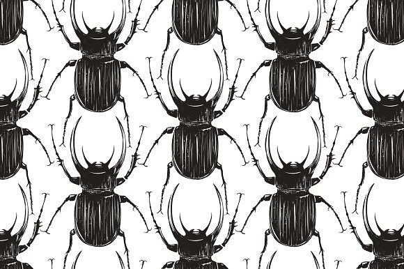 Black Beetle Insect Seamless Pattern. Patterns