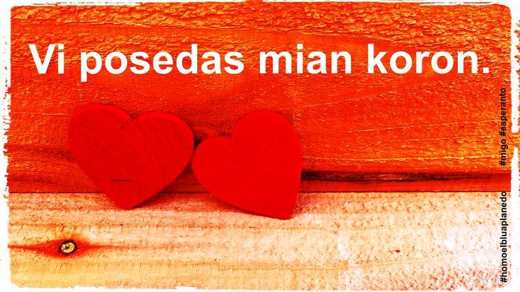 """""""Vi posedas min"""", """"Vi posedas mian koron."""" Posedi, havi je sia dispono ion abstraktan (el PIV). #amo #migo #esperanto #posedi #havi #esti #koro #akuzativo #gramatiko #homoelbluaplanedo"""