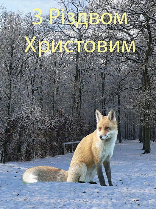 Ukrainian - Customised Christmas Cards Fine Art America