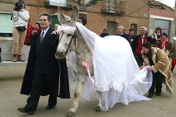 The bride's looking a little long in the face. | An Album of Awesome and Terrible Wedding Photos