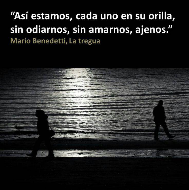 Así estamos, cada uno en su orilla, sin odiarnos, sin amarnos, ajenos...