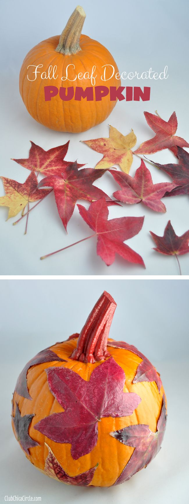 Fall Leaf Decorated Pumpkin craft idea with