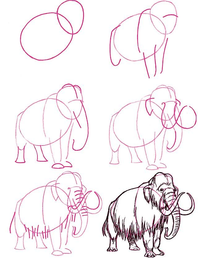 How to draw a mammoth