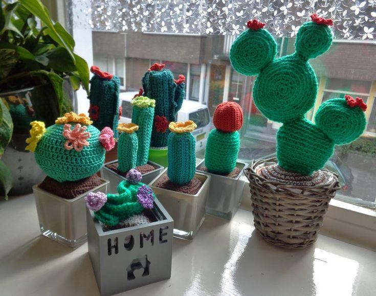 Amigurumi Cactus Tejido A Crochet Regalo Original : Best cactus tejidos al crochet con macetas de barro pintadas a