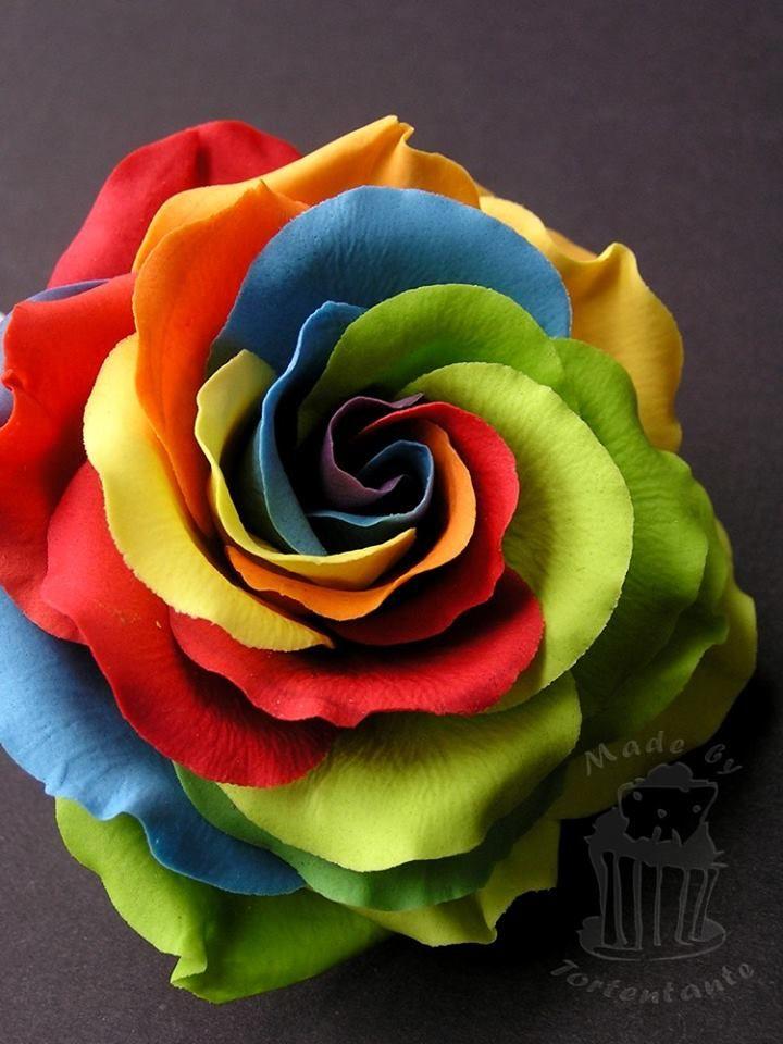 Regenbogen Rose aus Blütenpaste rainbow rose from gumpaste