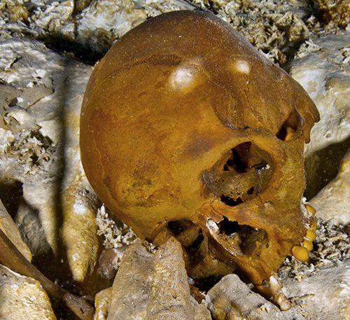 Primii americani | dezvaluiribiz.ro | Şi dacă primii oameni care au bătut pământul Americii de la un capăt la altul au fost europenii, acum 17.000 de ani? În 1996, în statul Washington, doi bărbaţi au scos la lumina zilei[...]